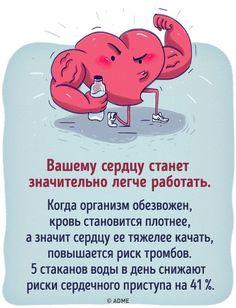 Что будет, если все напитки заменить водой. Обсуждение на LiveInternet - Российский Сервис Онлайн-Дневников