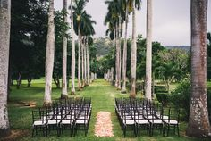 Mahogany Chivari Ceremony Chairs