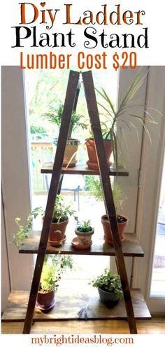 a Ladder Plant Stand Easy DIY Only 20 for Lumber How to make a Diy Plant Ladder Stand Shelf The lumber only costs 20 and its such an easy woodworking project mybrightid. Wood Projects For Beginners, Wood Working For Beginners, Diy Wood Projects, Diy Home Projects Easy, Diy Projects For Bedroom, Wood Projects That Sell, Bedroom Ideas, Woodworking Projects That Sell, Popular Woodworking