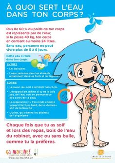 À quoi sert l'eau dans ton corps? - Ca Read more about quoi, sert and marche. Get To Know You Activities, Brain Gym, Edd, Science For Kids, Getting To Know You, School Fun, Homework, Montessori, Teaching