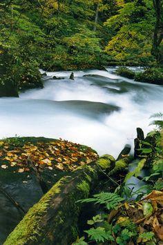 Oirase Valley, aomori, japan
