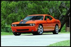 2009 Dodge Challenger SRT8  6.1L Hemi, 6-Speed, Driven 6 Miles Since New at Mecum Auctions