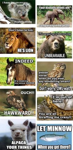 A full conversation of terrible (as in, awesome) animal puns... Bahaha