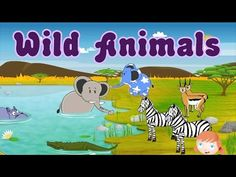 Learn About Wild Animals, Animal Sounds, Fun and Educational Videos for Kids - YouTube