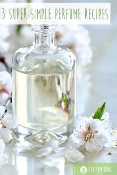 Super Simple Perfume Recipes You'll Love It's To celebrate whip up these 3 super easy, very yummy perfumes!It's To celebrate whip up these 3 super easy, very yummy perfumes! Perfume Hermes, Perfume Zara, Essential Oil Perfume, Perfume Oils, Diy Hair Perfume, Perfume Bottles, Diy Perfume Recipes, Natural Beauty Products, Homemade Beauty Products