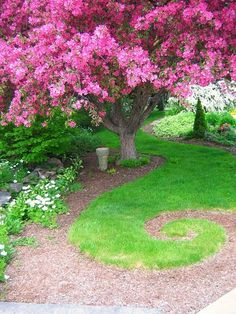 the pink tree and the green swirl