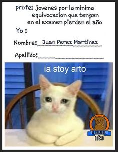 JAJAJAJA😂😂😂😂😂😂😂😂😂😂😂😂😂😂 Funny Spanish Memes, Spanish Humor, Funny Jokes, Hilarious, Funny Images, Funny Photos, Motivational Picture Quotes, Avakin Life, Humor Mexicano
