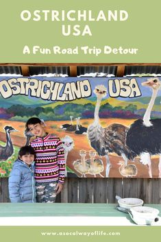 Have you ever stood near an 8-foot ostrich?  Looking for a fun detour on your next family road trip to Nor Cal? Read about Ostrichland USA here!
