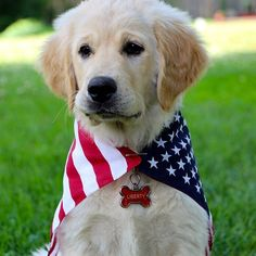 Liberty loves America. #TSM