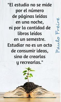 paulo freire frases educacion - Buscar con Google Education Issues, Education Quotes, Inspirational Phrases, Motivational Quotes For Life, Jean Piaget, Quotes En Espanol, Rudolf Steiner, Reading Art, Teachers' Day