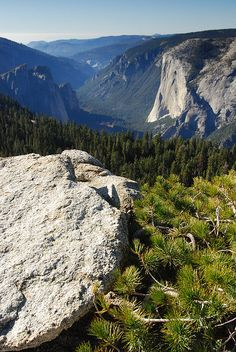El Capitan, Yosemite - California