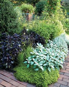 Culinary herbs add interest to gardens and fresh flavor to food, and cultivating them yourself costs less than buying them at the supermarket. These NYBG ideas will work in any garden, big or small. Garden Pests, Herb Garden, Vegetable Garden, Potager Garden, Hydroponic Gardening, Organic Gardening, Gardening Tips, Organic Vegetables, Growing Vegetables