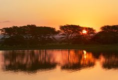 South Africa: a world in one country. We select the 20 most beautiful natural places in South Africa . Beautiful Homes, Most Beautiful, Kwazulu Natal, Scuba Diving, Continents, Outdoor Activities, Carrie, South Africa, Sunrise