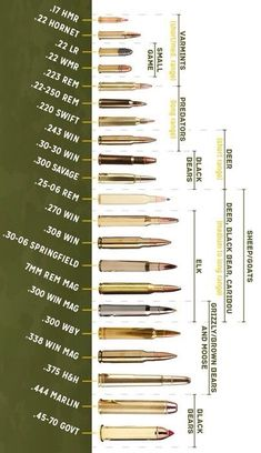 Rifle Ammo Buying Guide - Hunting With The Right Caliber Weapons Guns, Military Weapons, Guns And Ammo, Steel Targets, Reloading Ammo, Hunting Rifles, Elk Hunting, Predator Hunting, Turkey Hunting
