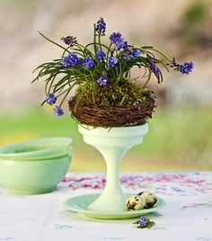 Hyacinth nest centerpiece: A footed dish provides an ideal platform for grape hyacinths nestled into a stylized bird's nest. More spring centerpieces: http://www.midwestliving.com/homes/seasonal-decorating/50-bright-and-easy-spring-decorating-ideas/?page=18