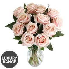 A dozen luxury pastel pink roses are looking oh so pretty this summer!