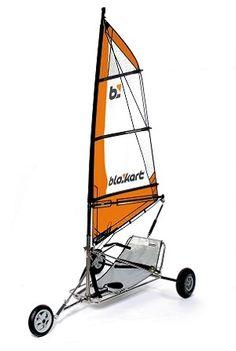 Wind Car, Char A Voile, Drift Trike, Boat Design, Windsurfing, Bike Frame, Small Boats, Motor Boats, Boat Plans