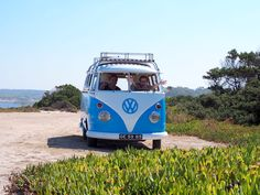 unique experiences while enjoy a surf trip in Portugal