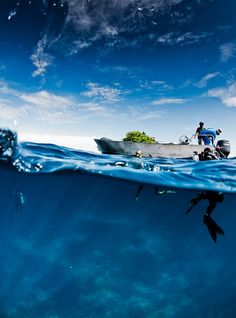 Divers. Wow, imagine being out there like this... Scary and cool prospect for me all at the same time...