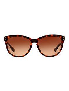 40c0842d886c4 Óculos de sol Óculos Da Moda, Óculos Femininos, Óculos De Sol Feminino,  Oculos