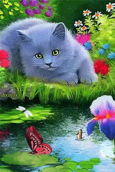 Котик у пруда - анимация на телефон №1432888