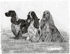 Trio English Cocker Spaniel print by PawprintsPortfolio on Etsy