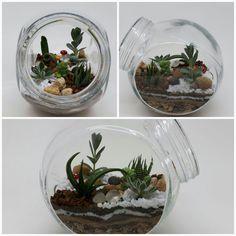 Um mini jardim para compor a beleza de sua casa  #Terrario #terrarium #myjob #cactus #suculenta #terrarioaberto
