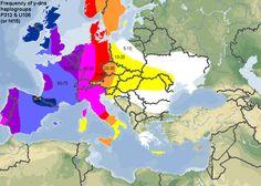 Frequency of y-dna haplogroups P312 and U106