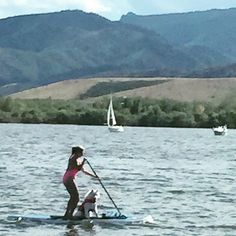 #dogdaysofsummer #westmarine Cassi learns to SUP at Chatfield!