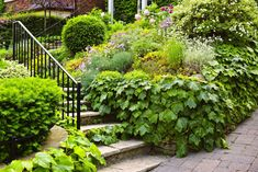 People judge the exterior of your home like they judge a book's cover. If you lack curb appeal, here are 8 smart moves to consider. Garden Yard Ideas, Garden Paths, Garden Landscaping, Garden Stairs, Garden Bridge, Steep Gardens, French Exterior, Metal Railings, Small Space Gardening