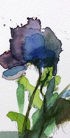 Blue Poppy Original