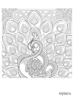 Peacock Feather Coloring pages colouring adult detailed advanced printable Kleuren voor volwassenen coloriage pour adulte anti-stress kleurplaat voor volwassenen Line Art Black and White: