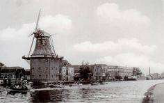 Het meeste complete overzicht fotos van hoe Alphen aan den Rijn vroeger was en nu is. Zoek, ontdek, reageer en deel jouw favoriete kiekjes.