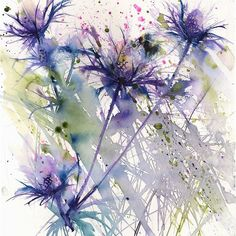 Contemporary art print of my BEE on sea holly/eryngium flower blue thistle insect illustration wall art home office decor hand signed Watercolor Illustration, Watercolour Painting, Watercolor Flowers, Bee Painting, Watercolours, Sea Holly, Thistle Tattoo, Art Floral, Art Plastique