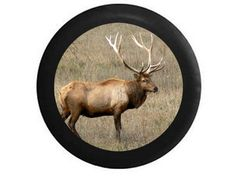 Full Color Large Bull Elk Huge Rack Open Field by TheCoverGuy