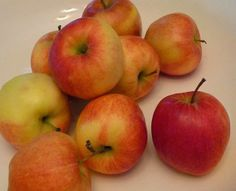 Eat Like Your Grandma: Back to Basics: Homemade Applesauce in Half an Hour!