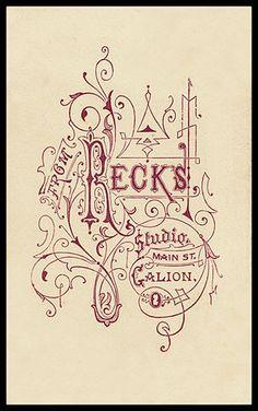 Typography Graphic Design Typo Inspiration