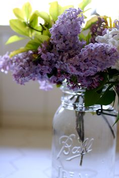 "Rochester,NH is the ""Lilac City"" great use for mason jars My Flower, Fresh Flowers, Flower Power, Beautiful Flowers, Lilac Flowers, Spring Flowers, Deco Floral, Arte Floral, Ikebana"