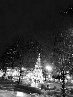 Infrared photo of Christmas lights and Christmas tree at The Greene in Dayton, Ohio
