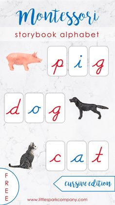 This FREE printable storybook alphabet is accessible to subscribers of our FREE Printables Library. Just print, prep and go! #montessori #preschool #montessoripreschool #montessorilanguage #preschoollanguage #moveablealphabet Montessori Homeschool, Montessori Materials, Language Activities, Early Education, Pre School, Teacher Resources, Teaching Kids, Free Printables, Alphabet