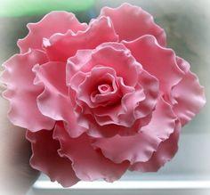 198 Best Fondont Flowers Images Fondant Flowers Fondant Cakes