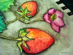 Dion Dior: Tutorial & Giveaway: Painting With Watercolor Pencils