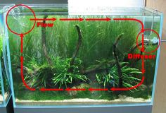 How to setup proper water flow - Filtration - Aquatic Plant Central
