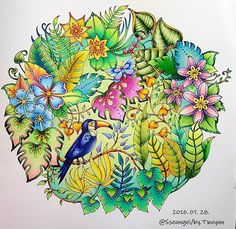 Inspirational Coloring Pages by @sseungei #magicaljungle #selvamagica…
