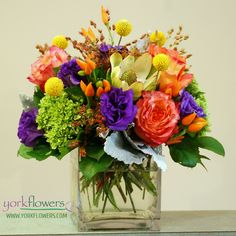 York Flowers - Washington DC Florist - Annapolis MD Florist - Jewel, $75.00 (http://www.yorkflowers.com/jewel/)