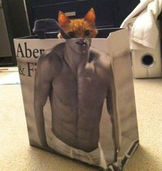 the kitty with great abs ;-)