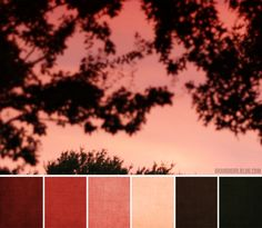 BrandiGirl is a great blogger, color inspiration and she shares :)