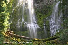Proxy Falls  Willamette National Forest / Three Sisters Wilderness, Oregon, USA