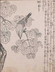 Morikuni: Bird on a Branch - Ronin Gallery
