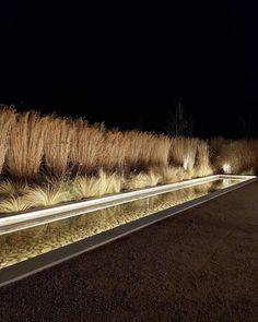 outdoor lighting ideas for your garden Plant Lighting, Water Lighting, Outdoor Lighting, Modern Landscape Lighting, Arch Light, Garden Entrance, Water Element, Modern Landscaping, Cool Landscapes